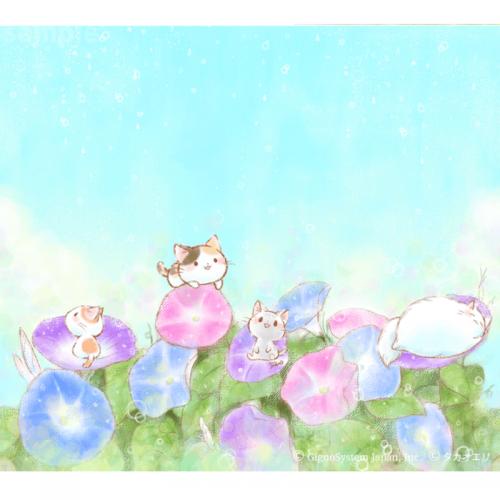 「キラキラの朝がきたよ!」6月配信 | セットアップ∞Lab