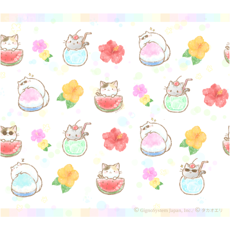 summer cat 猫 ねこ